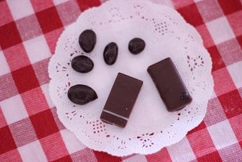 メゾンドショコラのキャビアとウオッカのショコラ