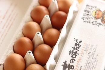 お菓子教室で使っている厳選卵・オーガニック卵