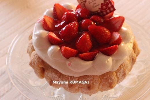 苺のミルクムースのシャルロット